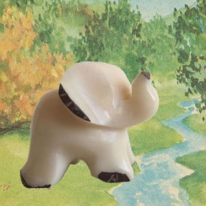 elephant-ivoire-vegetal-robindesbois