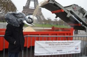 Robin des Bois pour les éléphants, Paris 2014