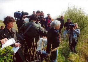Déchets de marées noires, Le Havre, France 2000