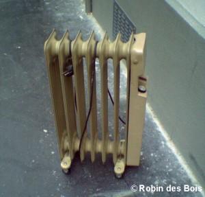 Radiateur-RobinDesBois-2009