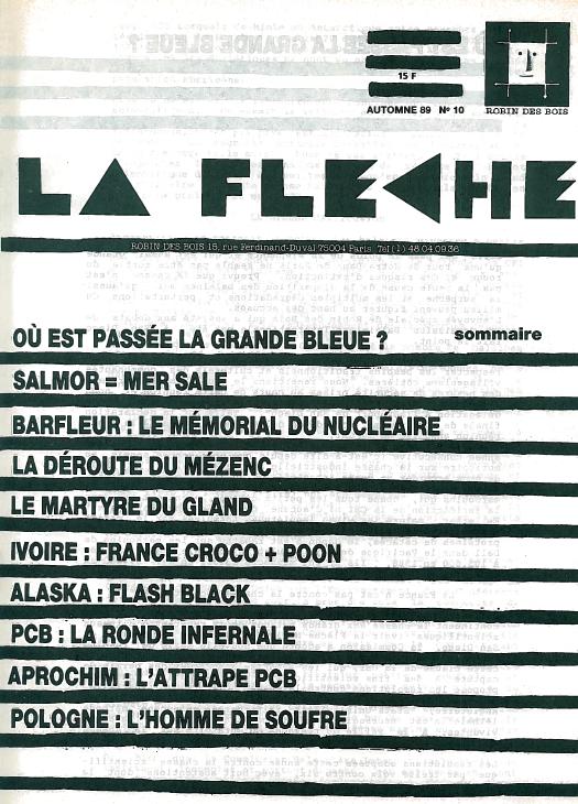 Fleche-10-robindesbois