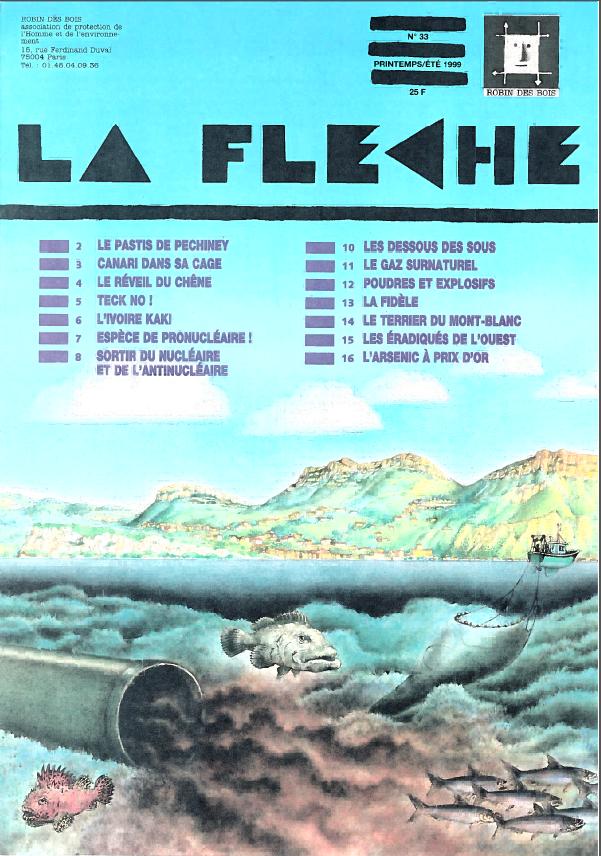 Fleche-33-robindesbois