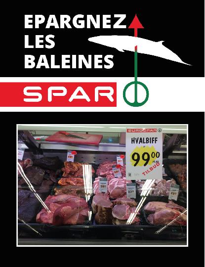 operation_epargnez-les-baleines_robin-des-bois