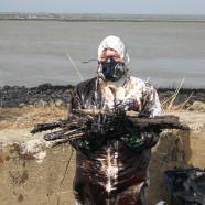 (Français) Marée noire dans l'estuaire de la Loire , reportage photos – 2008