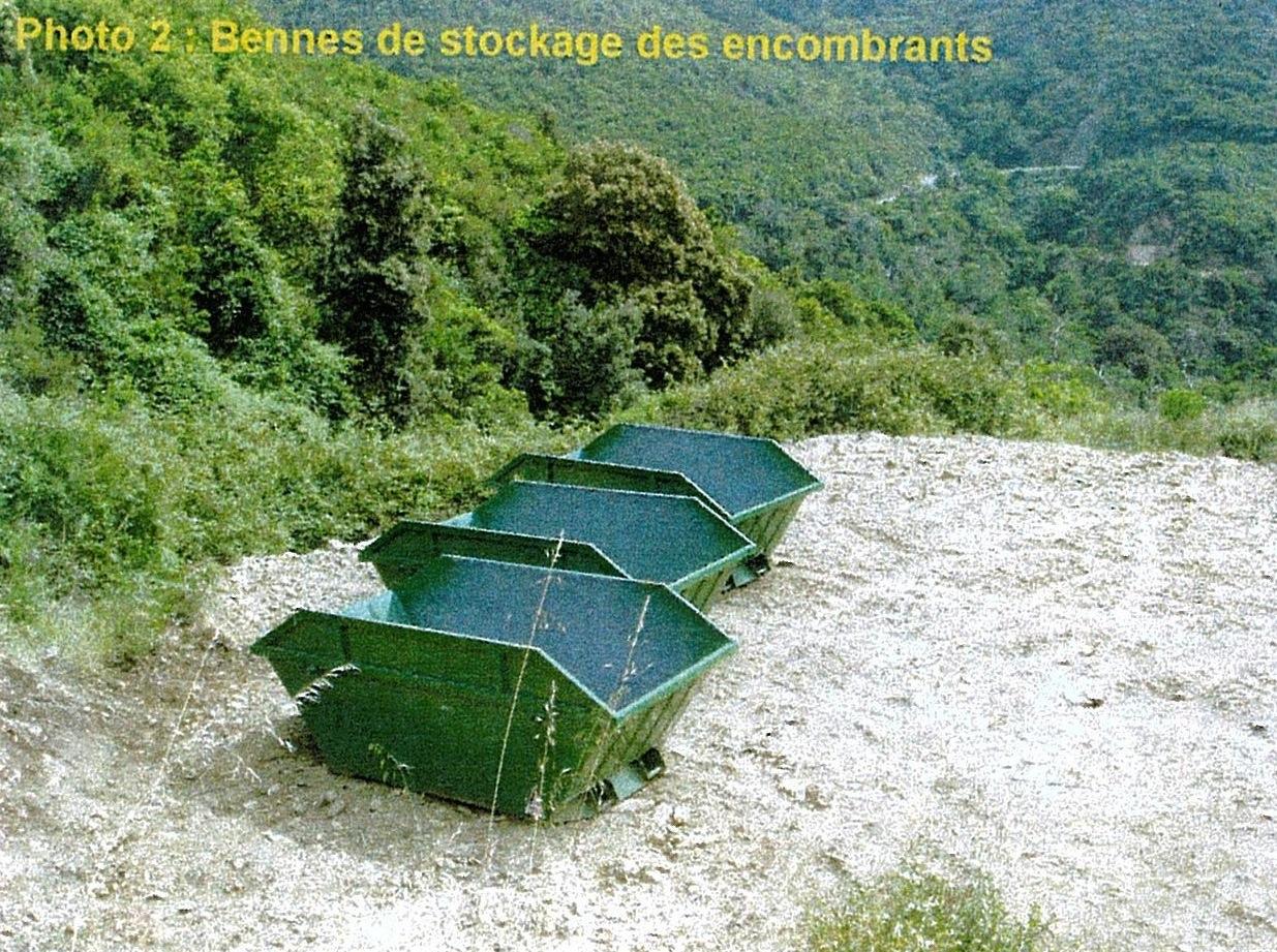 sari-dorcino-photo2-RobindesBois