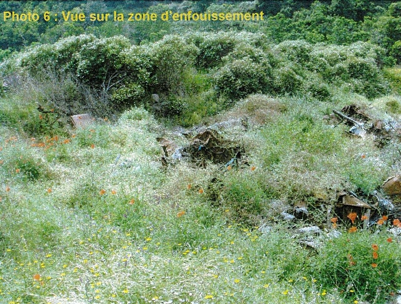 sari-dorcino-photo6-RobindesBois