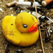 (Français) La chasse aux Duck Race est ouverte