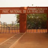 Risques dans le Parc de la Pendjari
